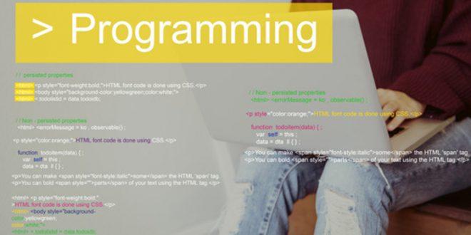 Pelatihan Step by Step Menjadi Programmer Handal Dengan Tools .Net Developer