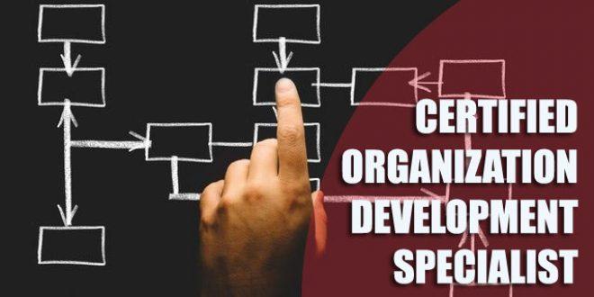 Pelatihan Certified Organization Development Specialist