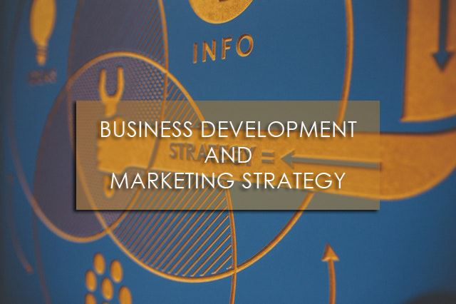 Training Business Development and Marketing Strategy
