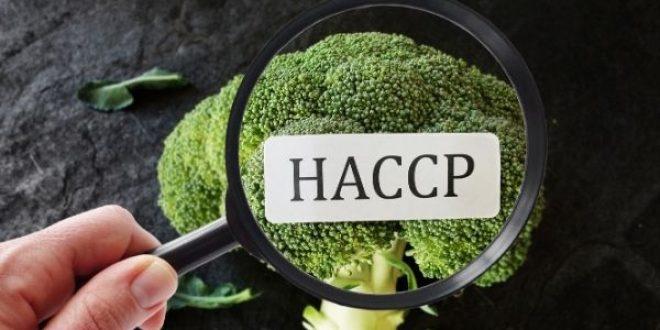 Online Training : Audit Internal Keamanan Pangan (Food Safety) Sertifikasi BNSP