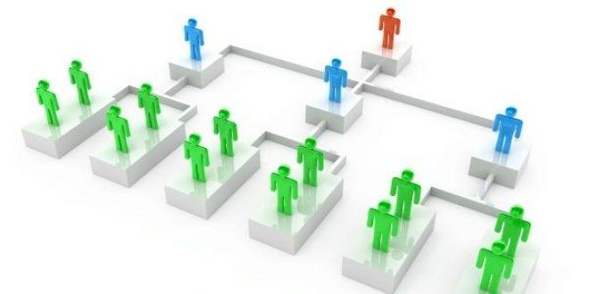 Online Training :  Designing Effective Organizations