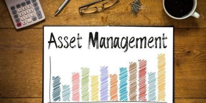 Online Training : Asset Management